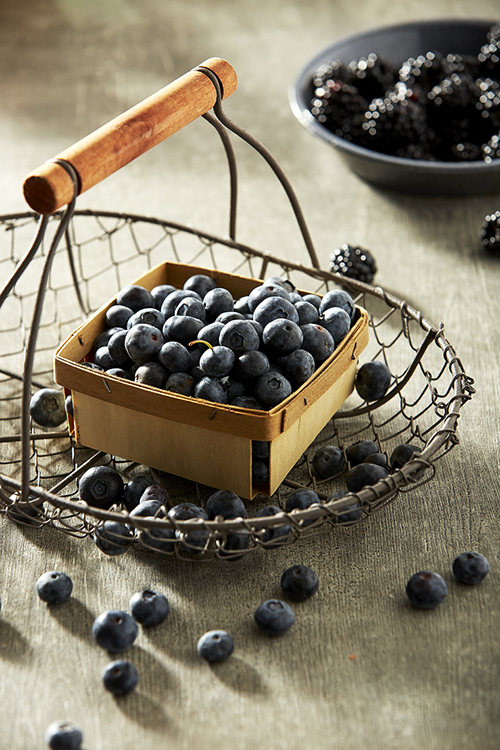 AlanCampbellPhotography, blueberry still life