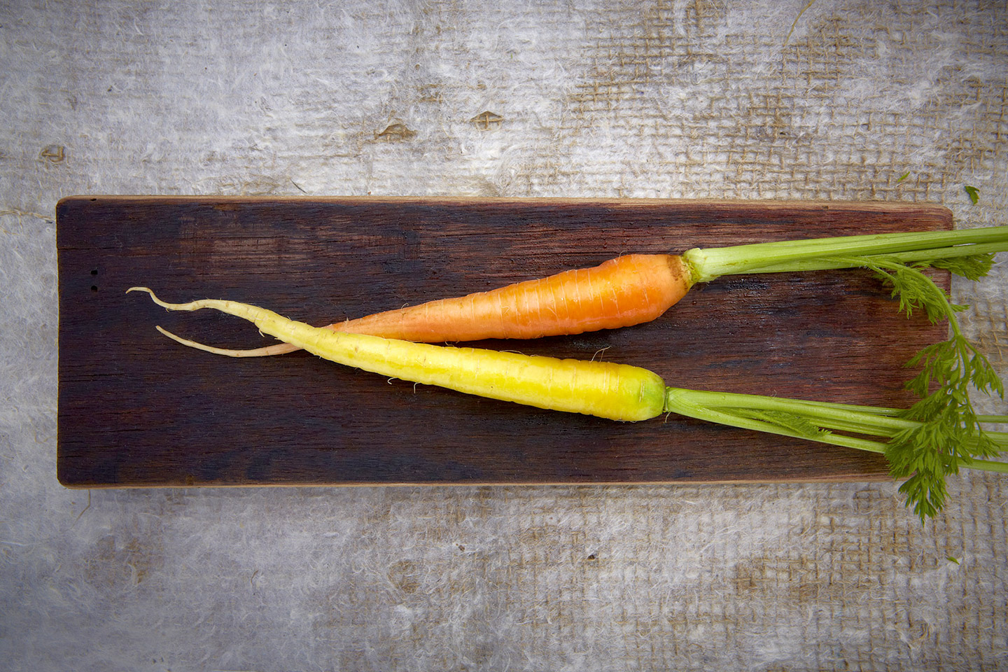 AlanCampbellPhotography, young carrots garden life ingredients