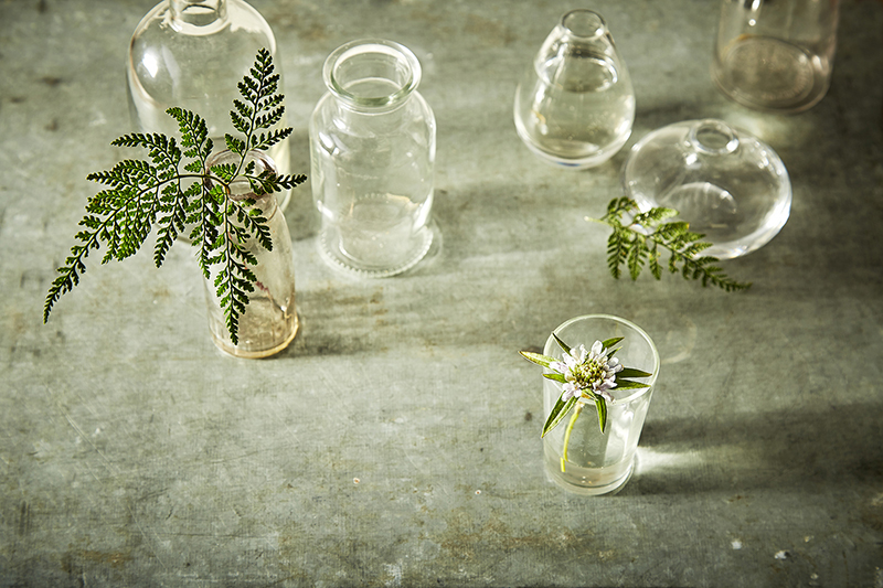AlanCampbellPhotography, Glass with Fern still life