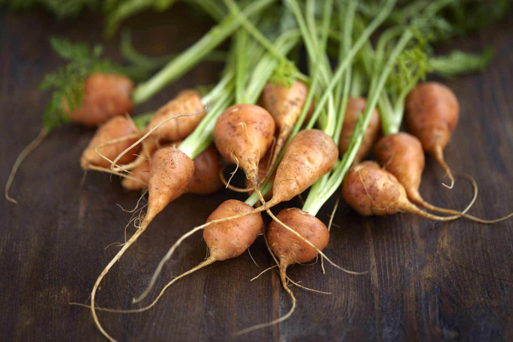 AlanCampbellPhotography, fresh ingredients carrots