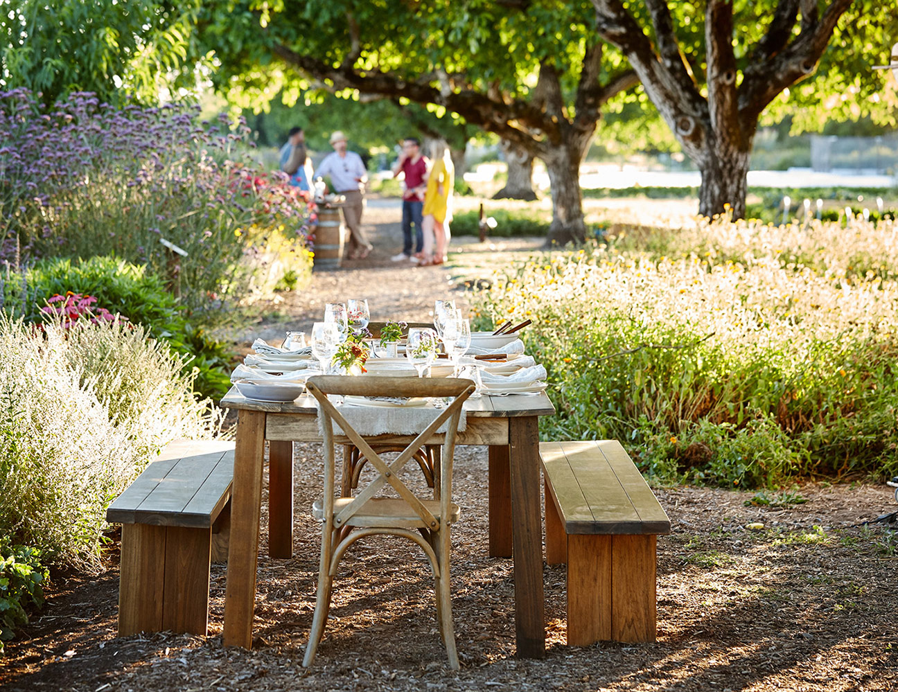 AlanCampbellPhotography, sonoma county lifestyle dining outdoors